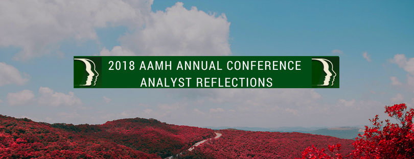 2018 CONFERENCE ANALYST REFLECTIONS